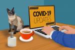 Bezpieczna praca zdalna – czyli jak utrzymać biznes w czasach koronawirusa?