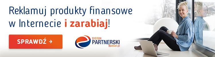system-partnerski